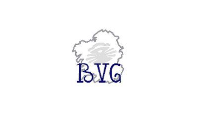 BVG destacada