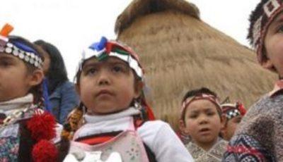 imagen de unos nenes mapuches