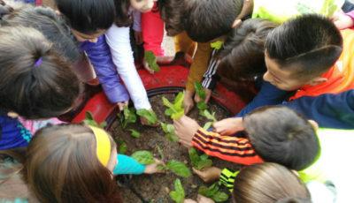 imagen de niños y niñas plantando plantitas juntos