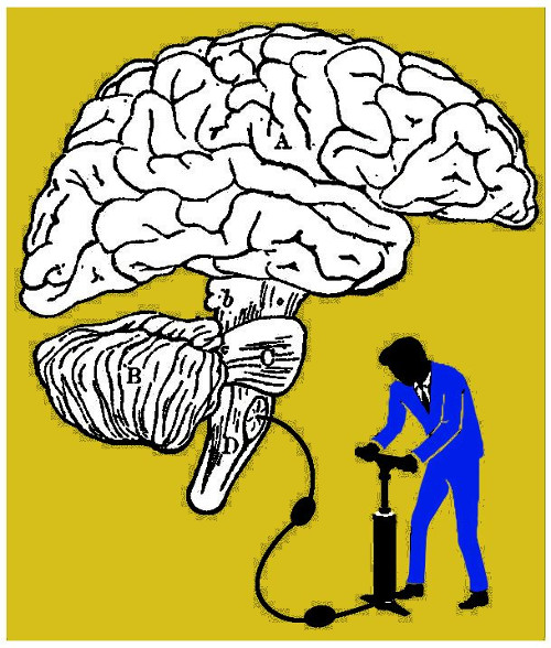 """Ilustración que representa a una persona """"inflando"""" un cerebro"""