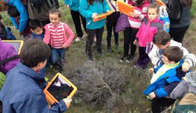 un grupo de niños en el campo con tabletas