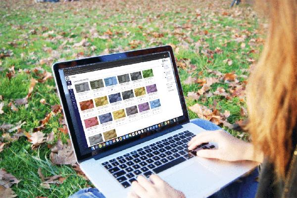 imagen de una persona usando un ordenador portátil en un jardín