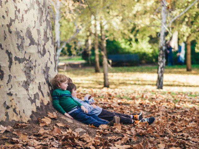 imagen de una pareja de niños en un bosque