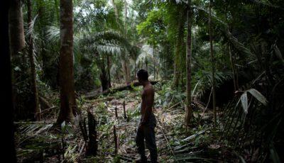 imagen de un indígena en la selva amazónica