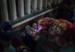 niños envueltos en mantas cerca de la frontera con México